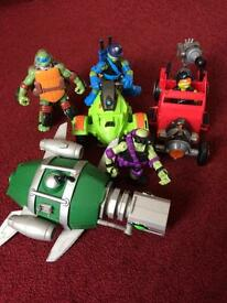 Ninja turtles assortment