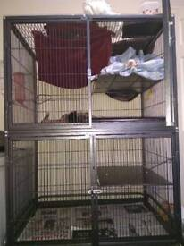 Double ferret cage