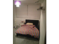 Double room in recently renovated 2 bedroom flat in Southfields - Short Term Let (6 Weeks)