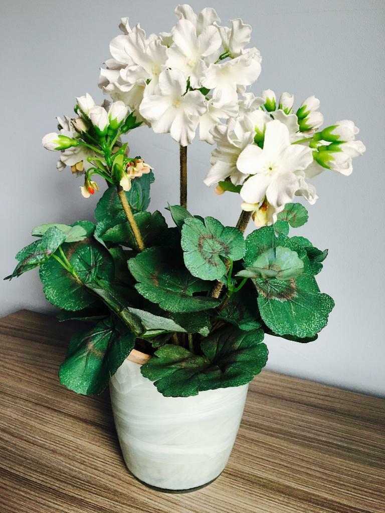Quality pure silk beautiful plant in a marble pot, quick sale at only £25,first to see it will buy