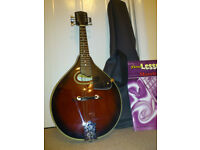 A Mandolin and Case [never used ] - in 'as new' condition