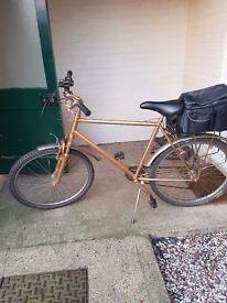 Ladies rose gold mountain bike