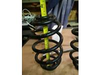 Rear suspension springs Vectra C also VW Passat