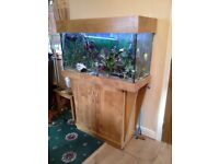 Tropical Fish Tank - RENA 200 Ltr