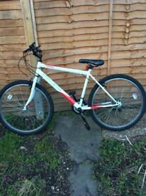 "24"" mountain bike"
