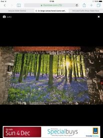 2 x large canvas pictures