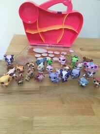 Littlest Pet Shop Bundle