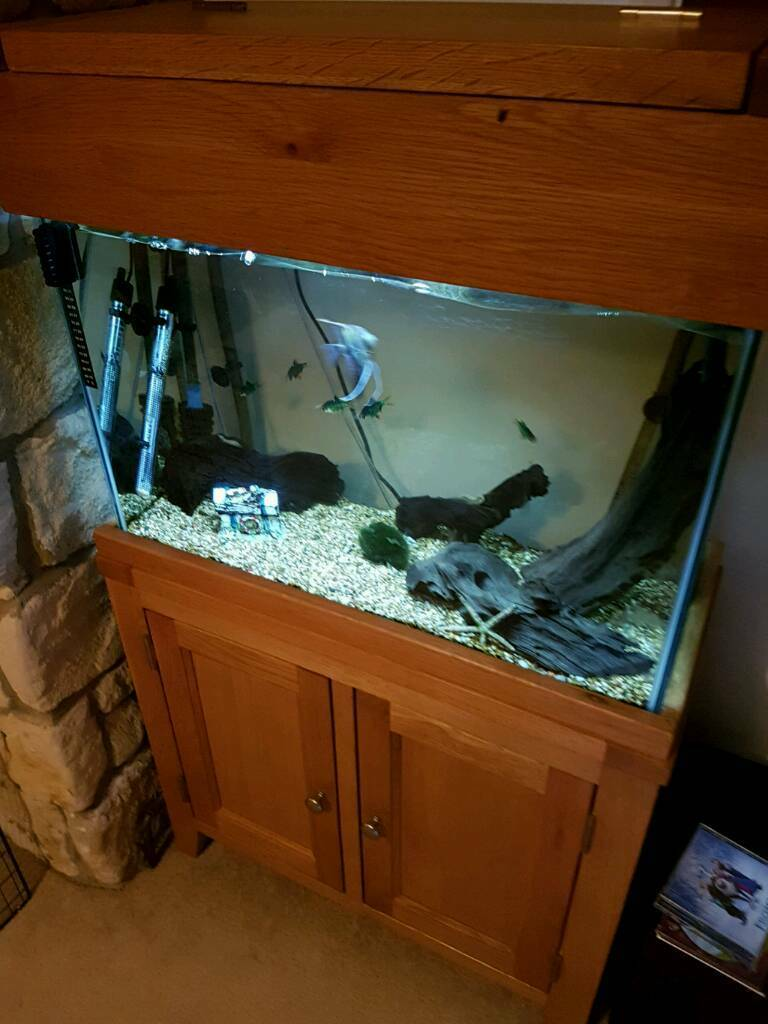 Aqua oak two doors aquarium fish tank with tetra 800 ex pump and more