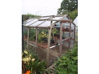 WOODEN ALTON GREENHOUSE 8 X 6 WITH STAGING AND SLIDING DOOR