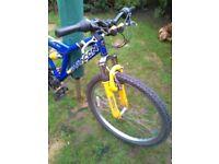 Bike - Saracen Vice all terrain