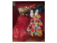 Hawaiian Party dress up pack enough for you and all your friends