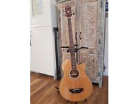 WASHBURN Electro Acoustic bass guitar