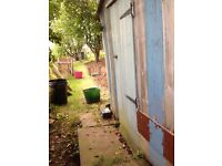 Free garden shed /chicken coop 12ftx 8ft