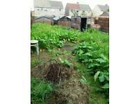 John's gardener services