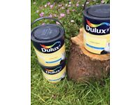 Dulux wall &silling paint 2.5 li (soft apple matt.lemon tropy .resbperry.pink champagne .