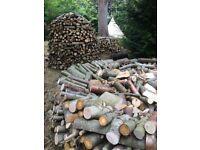 Seasoned hardwood logs, £15