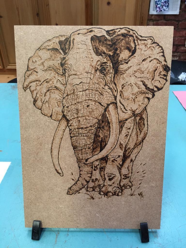 Elephant plaque. Sisters cabinet