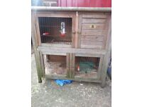 rabbit hutch and accessories for sale