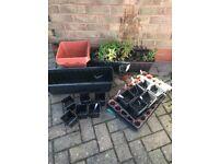 Garden Planters Pots for Plants (x20)