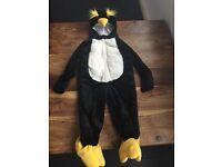 Emperor penguin dress up