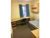 En-Suite flat for rent till mid-July Manchester City Centre MUST GO
