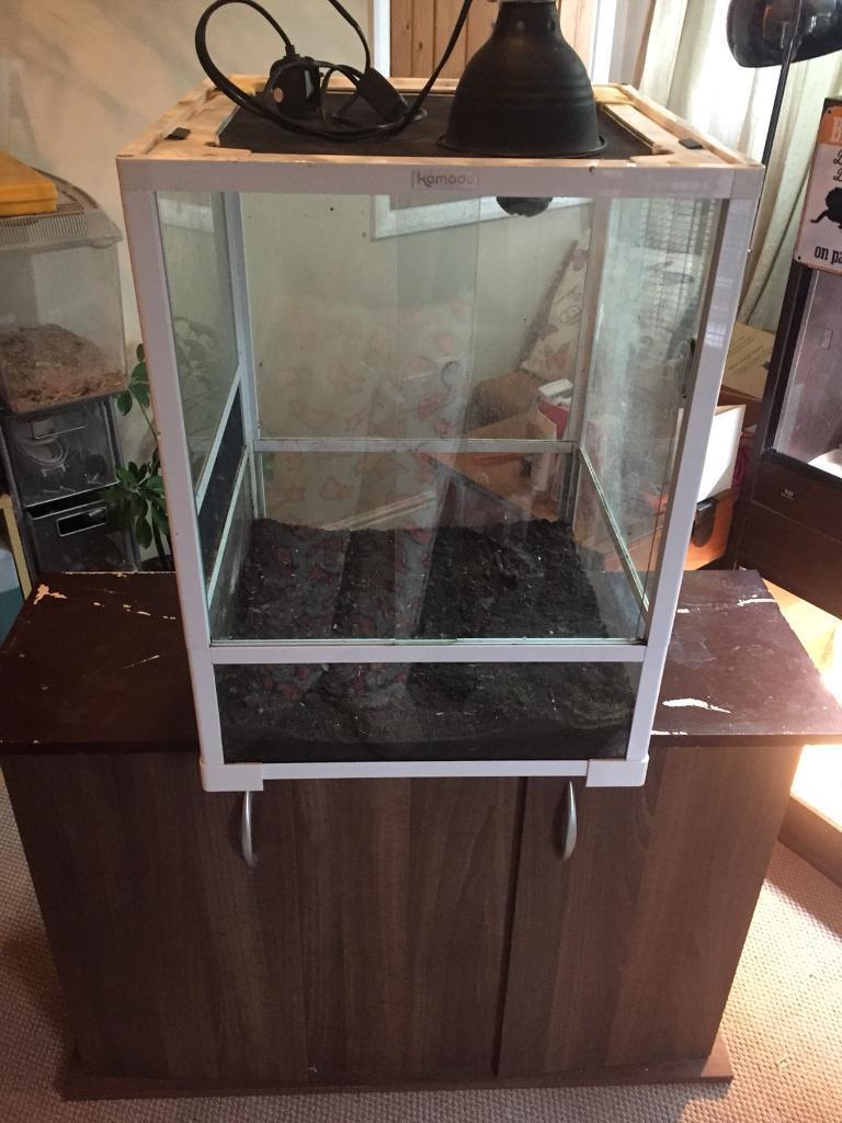 White Glass Reptile Vivarium With Mesh Ventilation Light Dome And