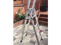 Sturdy ladders