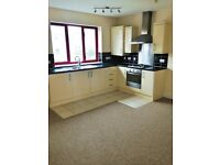 Available November -Spacious Immaculate 2 Bedroom Flat in Kingswood with Off Street Parking