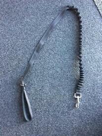 Anti shock dog lead