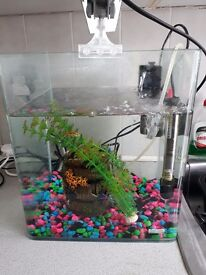 Fish tank with heater and pump