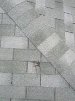 FREE ESTIMATE - ROOFING REPAIRS - AFFORDABLE PRICES