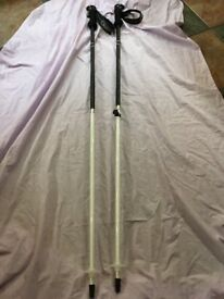 Salomon Divine ski poles – 120cm. Excellent condition.
