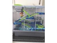 2 Baby Gerbils + Cage