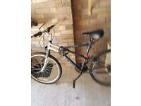 mens apollo mountain bike