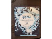 Harry Potter projection book