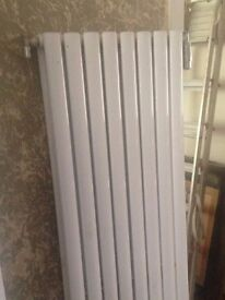 Two vertical radiators . Good condition.