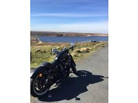 Harley Davidson Iron 883 Custom Bobber, loads of extras, eye catching bike, low mileage