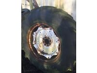 County Forestry Wheel/Tyre, 16.9 x 34, Tractor, Highland Bear, Falstone, Timber, Forestry