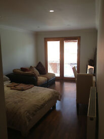 SHORT TERM MODERN FULLY FURNISHED APARTMENT INC ALL BILLS CLOSE TO CATHEDRAL