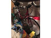 Apollo Cafe hybrid ladies bike