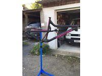 Santa Cruz bronson cc frame and rear shock