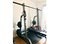 Complete Olympic Weight Training Set: Squat Rack, Weights, Dumbbells, Bench, Bar & More