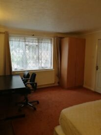 Large Room to let single occupancy