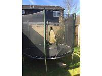 8ft plum trampoline