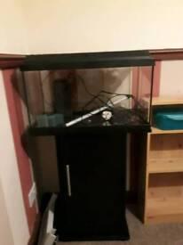 Juwel fish tank 60lt