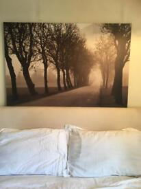 Large black and white picture on canvass.