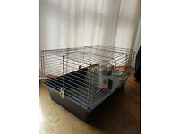 quinea pig cage bottle and bowl