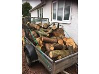 Logs for sale (Firewood)