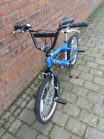 Boys BMX bike with stunt pegs and stand
