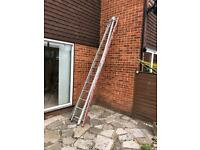 Window cleaning ladder